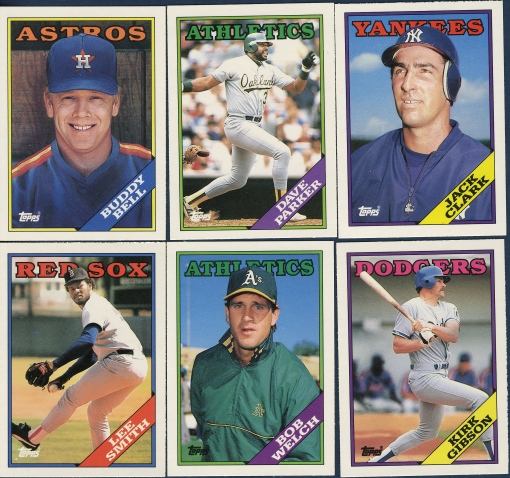 Lifetime Topps Project