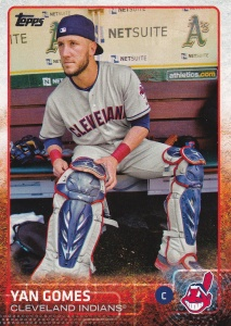 2015 Topps s2 photo variation Yan Gomes