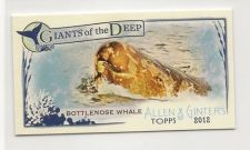 2012 Ginter mini Giants Deep Bottlenose Whale