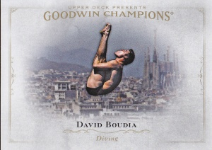 2016 Goodwin Boudia diver